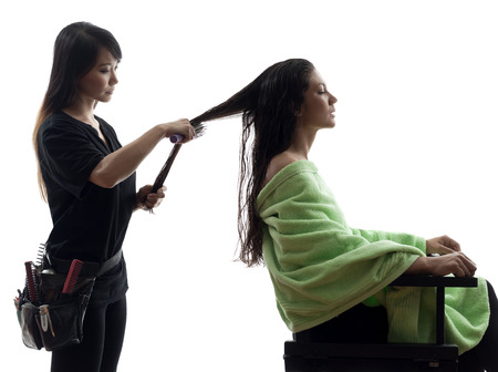 hairstylists: woman and hairdresser in silhouette on white  Stock Photo