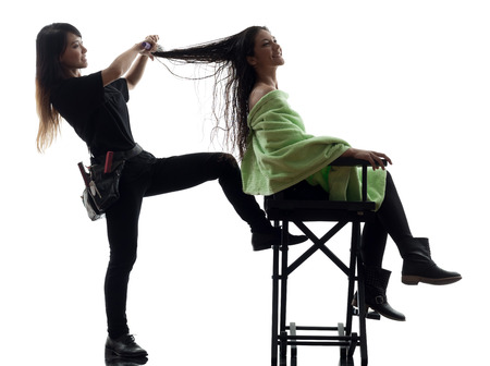 hairstylists: woman and hairdresser in silhouette on white background