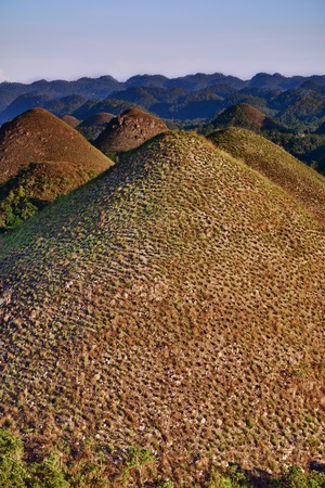 bohol: Chocolate hills in Bohol in Philippines