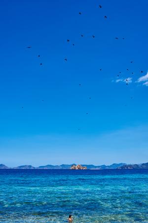 palawan: Azul marino en Palawan Filipinas