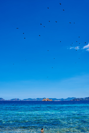seascapes: Blue Seascape in Palawan Philippines