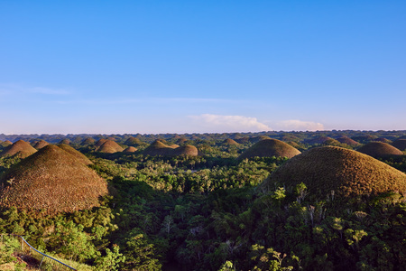 on the hill: Chocolate hills in Bohol in Philippines
