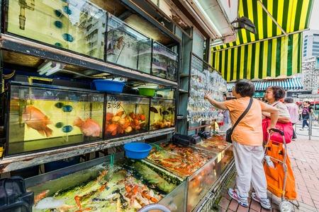 city fish market: Kowloon, Hong Kong, China- June 9, 2014: people at the goldfish market in Mong Kok