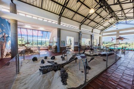Villa De Leyva, Colombia - February 7, 2017 : fossil dinosaur of Centro de Investigaciones Paleontologicas Villa de Leyva Boyaca in Colombia South America