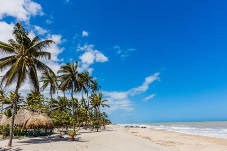 Palomino beach at La Guajira in Colombia South America