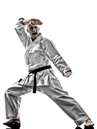흰색 배경에 고립 된 하나의 가라테 카타 훈련 남자 스톡 콘텐츠