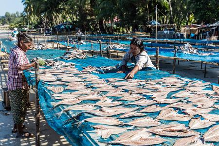 NGAPALI, 미얀마 -2006 년 12 월 14 일 : 물고기 건조 Ngapali 비치 Rakhine 상태에서 미얀마 (버마) 스톡 콘텐츠 - 89389082