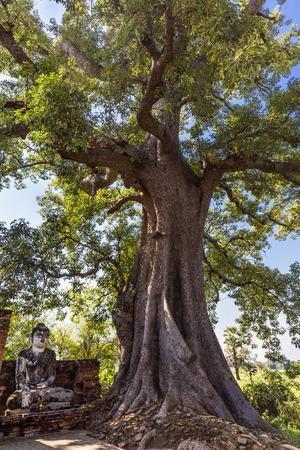 ruins of the ancient kingdom of Ava Amarapura  Mandalay state Myanmar Banco de Imagens