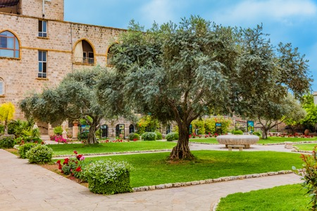 Saint John Marc Cathedral  Byblos Jbeil in Lebanon Middle east Фото со стока