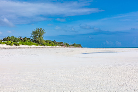 Muyuni white sand beach   in Unguja aka Zanzibar Island Tanzania East Africa