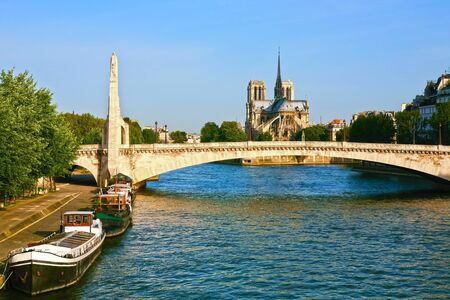 le pont neuf bridge riverside  in paris france