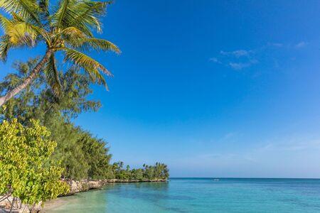 coastline beach seaside of Kizimkazi in Unguja aka Zanzibar Island Tanzania East Africa