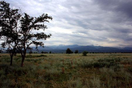 Dramatic field mountain storm tree photo