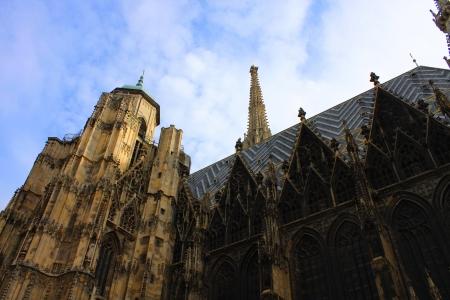 stephen: Cattedrale di Santo Stefano s