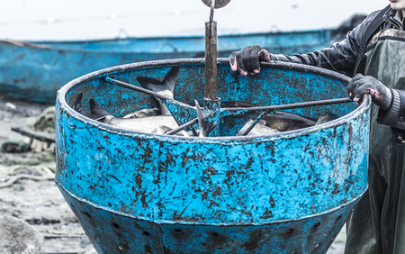 near the sea, a barrel of fish transported by crane Stock Photo