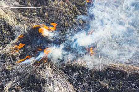 heat loss: grass field on fire