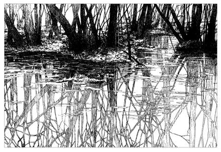 Landscape, hand-drawn liner graphics. Trees are reflected in the river. A great gift. Picture. Vector. Without background