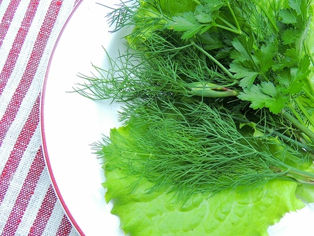 Herbs and lettuce leaves on a white plate