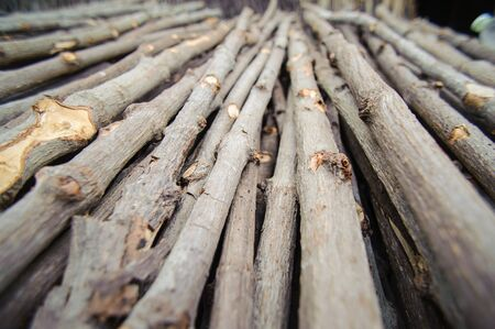 kindling: Kindling or fire wood is stacked in Charcoal plant