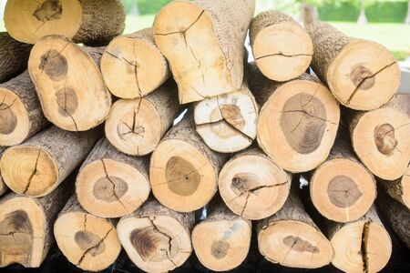 balk: Stacked wood pine timber for construction buildings Background