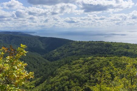 Beautiful aerial view of the Black Sea from top of the hill of the green forest. Sun light reflection.