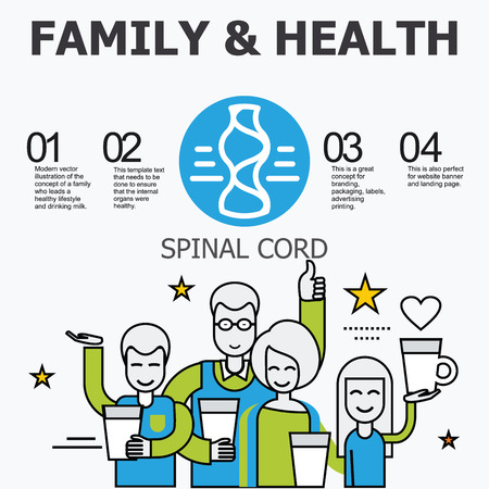 spinal cord: Internal organs - spinal cord. Family and a healthy lifestyle. Medical infographic icons, human organs, body anatomy. Vector icons of internal human organs Flat design. Internal organs icons.