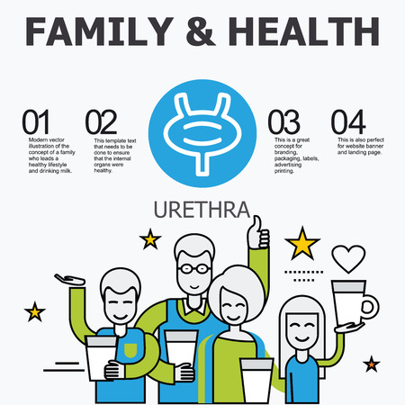 urethra: Internal organs - urethra. Family and a healthy lifestyle. Medical infographic icons, human organs, body anatomy. Vector icons of internal human organs Flat design. Internal organs icons.