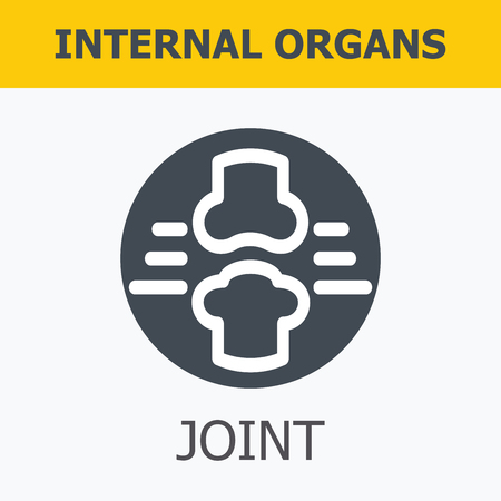 organos internos: Los �rganos internos - conjuntos. La familia y un estilo de vida saludable. Iconos m�dicos infogr�ficas, �rganos humanos, anatom�a corporal. Iconos de vector de �rganos humanos Dise�o plano interno. Los �rganos internos iconos.