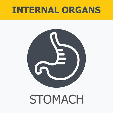 Organes internes - estomac. Famille et un mode de vie sain. Icônes médicales infographiques, organes humains, anatomie du corps. Icônes vectorielles des organes humains internes Design plat. Icônes d'organes internes.