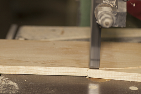 cabinet maker: Bandsaw cutting wood plank