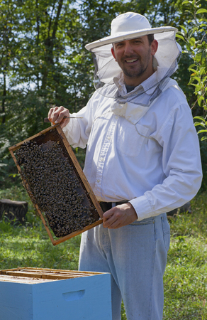Young beekeeper smiling and showing his bee colony Stock Photo