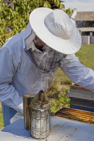 beekeeper: Young beekeeper