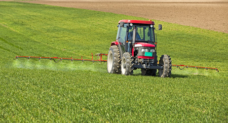Farmer spraying wheat field at spring season, herbicides, pesticides
