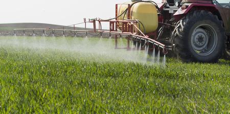 Ciągnik rozpylanie pola pszenicy z opryskiwacza, herbicydów i pestycydów