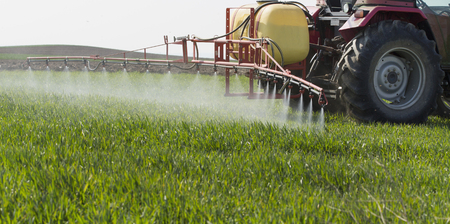 Tractor spraying wheat field with sprayer, herbicides and pesticides Stock Photo