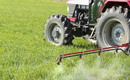 Spraying wheat crops field with tractor and sprayer Stock Photo