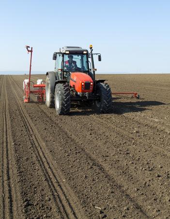 siembra: Agricultor en los cultivos de ma�z de siembra de ma�z para tractores