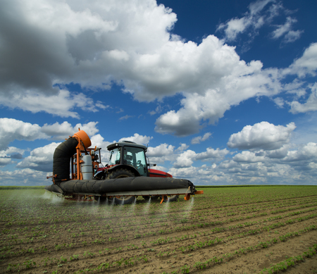fungicide: Tractor spraying soybean crops field at spring season, herbicides, pesticides