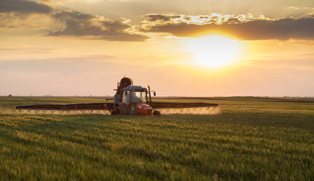 Farmer in tractor spraying crops at sunset