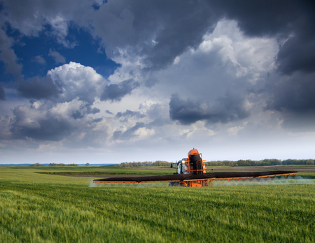 toxicity: Farmer spraying wheat field at spring season, herbicides, pesticides