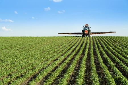 Tractor spraying soybean crop field