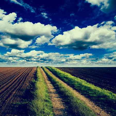 plough land: Rural road trough fields of arable land