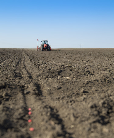 seeding: Tractor seeding crops at field.