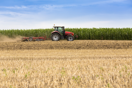Tractor cultivating wheat stubble field, crop residue. Stock Photo