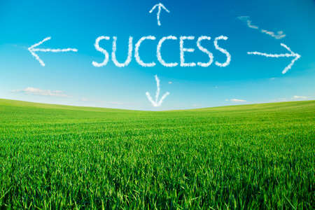 explained: Different ways to success explained with text in clouds over green field