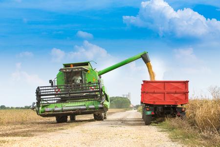 cosechadora: Combinar la cosecha de soja segadora en el campo