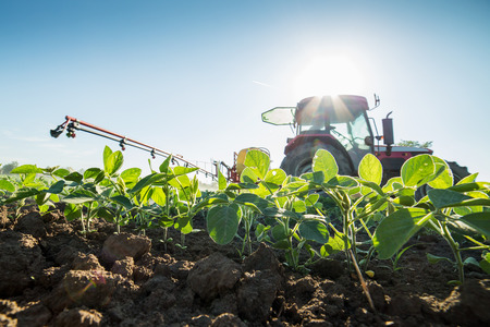 Tractor spraying soybean crops with pesticides and herbicides Stockfoto