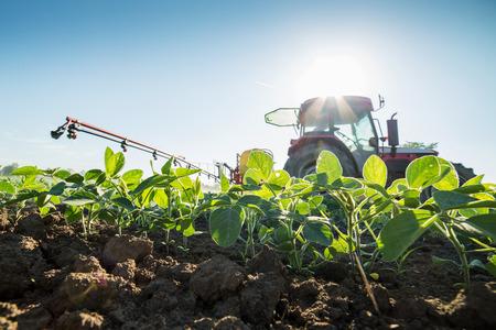 Tractor sproeien van soja gewassen met pesticiden en herbiciden Stockfoto