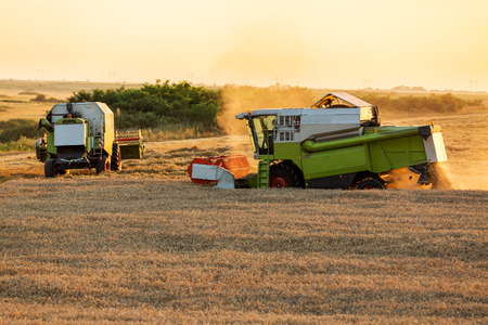 harvesters: Combine harvesters in action on wheat field sunset
