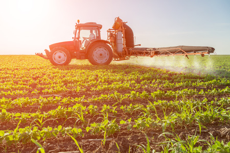 toxicity: Tractor spraying soybean crops